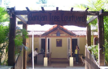 Banyan Tree Courtyard