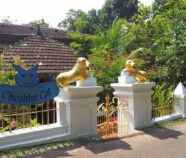 Cheshire Cat Gallery